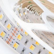 Светодиодная лента FHT 62 DW / WW белого дневного свечения и белого теплого свечения, м