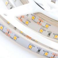 Светодиодная лента FLT 5UWW ультратеплая (2600 K)